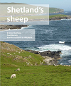 Shetlands sheep 100.png